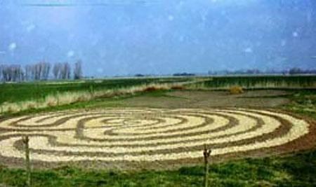 Tanz im Weidenlabyrinth
