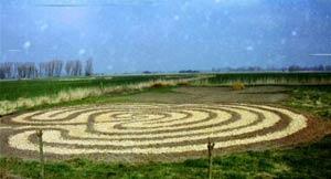 Labyrinth nach dem Pflanzen Februar 2004 Foto: Anjou Reuter